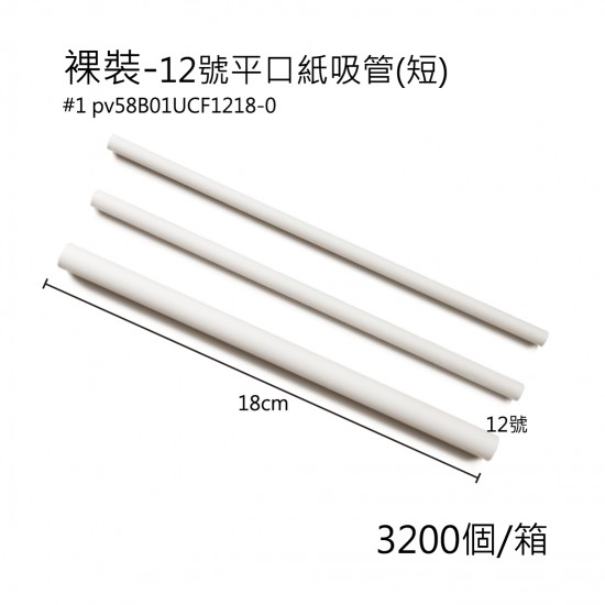 12號紙吸管(短) /箱